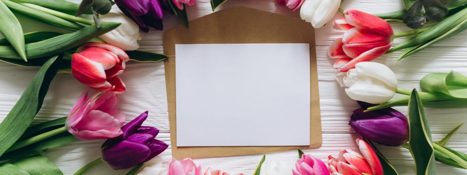 beautiful-rozovye-fresh-colorful-wood-tiulpany-pink-white-2